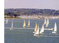 photo of racing yachts from Tower